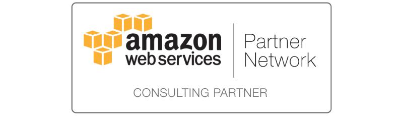 APN_Standard-Consulting-Partner-2