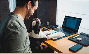Microsoft-365-tools